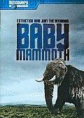 Baby Mammoth:raising the Mammoth