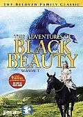 Black Beauty:adventures Series 1