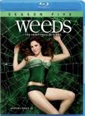 Weeds:season 5 (Blu-ray)