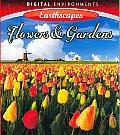 Flowers & Gardens (Blu-ray)