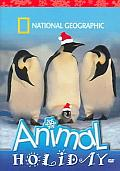 Animal Holiday