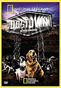 Dogtown:new Beginnings