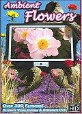 Ambient Flowers:Ultimate Video Garden