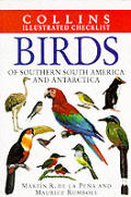 Birds Of Southern South America & Anarta
