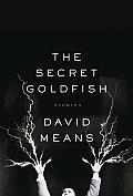 The Secret Goldfish: Stories