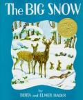 The Big Snow Cover
