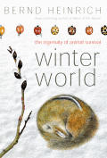 Winter World The Ingenuity Of Animal Survival