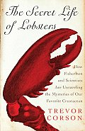 Secret Life Of Lobsters How Fishermen