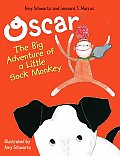 Oscar The Big Adventure Of A Little Sock