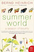 Summer World A Season of Bounty