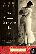 The Space between Us (P.S.) Cover