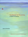 Handbook for Drowning: A Novel in Stories Cover