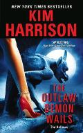The Outlaw Demon Wails Cover