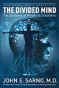 The Divided Mind: The Epidemic of Mindbody Disorders Cover