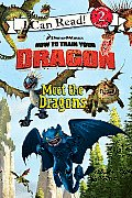 Meet The Dragons How to Train Your Dragon