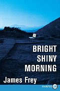 Bright Shiny Morning (Large Print) Cover