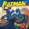 Feline Felonies (Batman)