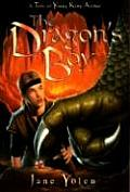 Dragons Boy A Tale Of Young King Arthur