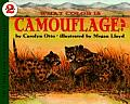 What Color Is Camouflage?: An Incredible Story of Hope, Triumph, and Everyday Joy