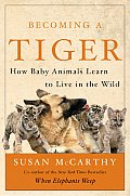 Becoming A Tiger How Baby Animals Learn