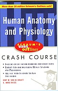 Schaums Easy Outline of Human Anatomy & Physiology