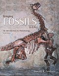 Bringing Fossils to Life An Introduction to Paleobiology 2nd Edition