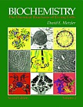 Biochemistry: The Chemical Reactions of Living Cells