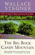 The Big Rock Candy Mountain (Contemporary American Fiction) Cover