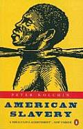 american slavery by peter kolchin thesis