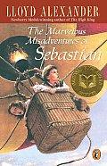 Marvelous Misadventures Of Sebastian