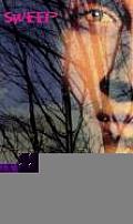 Sweep 04 Dark Magick