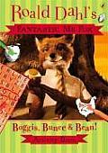 Fantastic Mr Fox Boggis Bunce & Bean Activity Book