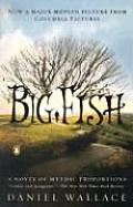 Big Fish Cover