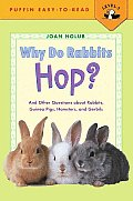 Why Do Rabbits Hop?: And Other Questions about Rabbits, Guinea Pigs, Hamsters, and Gerbils