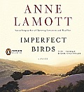 Imperfect Birds Cover