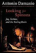 Looking for Spinoza Joy Sorrow & the Feeling Brain