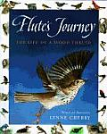 Flutes Journey The Life Of A Wood Thrush