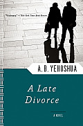 Late Divorce (84 Edition) Cover