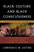 Black Culture & Black Consciousness: Afro-American Folk Thought From Slavery To Freedom by Lawrence W. Levine