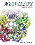 Biochemistry : Molecular Basics of Life (4TH 09 - Old Edition) Cover