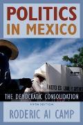 Politics In Mexico The Democratic Consolidation 5th Edition