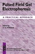 Practical Approach Series #158: Pulsed Field Gel Electrophoresis: A Practical Approach