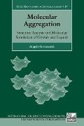IUCr Monographs on Crystallography #19: Molecular Aggregation: Structure Analysis and Molecular Simulation of Crystals and Liquids