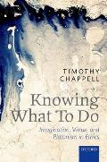 Knowing What to Do: Imagination, Virtue, and Platonism in Ethics