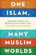One Islam, Many Muslim Worlds: Spirituality, Identity, and Resistance Across Islamic Lands (Religion and Global Politics)