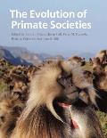 Evolution Of Primate Societies