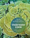 Underwater Eden Saving the Last Coral Wilderness on Earth