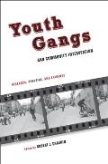 Youth Gangs and Community Intervention (10 Edition)