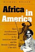 Africa in America Slave Acculturation & Resistance in the American South & the British