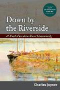 Down By the Riverside: a South Carolina Slave Community, Anniversary Edition ((Rev)09 Edition)